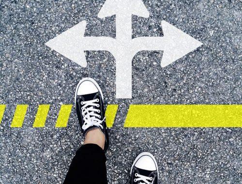 escolher_nova vita